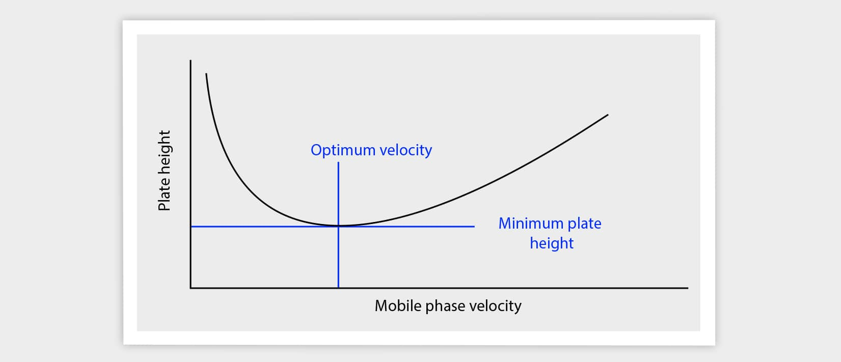 plate height, column efficiency, flow rate, mobile phase velocity, solvent velocity