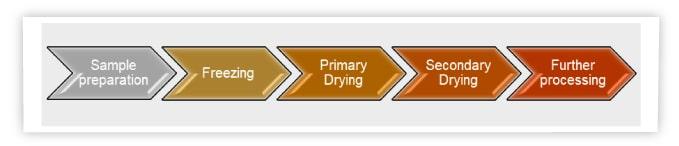 PCR diagnostic kits, lyophilization, freeze-drying